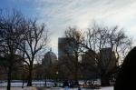 Boston Public Garden sunny