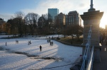 frozen duck pond in Boston