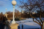 winter in Boston Public Garden