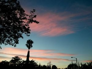 Abhi´s first sunset in Los Angeles.